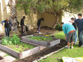 Students work in garden beds